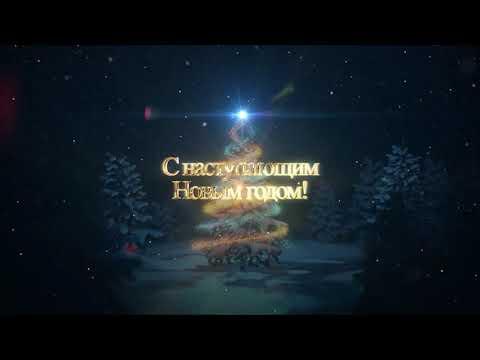 Новогоднее поздравление Татьяна Липатова