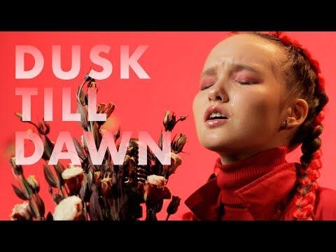 ZAYN - Dusk Till Dawn ft. Sia ( cover by Arina )