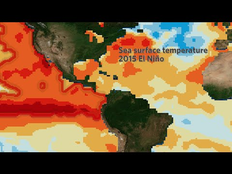 El Niño Impacts: The Good, the Bad and the Ugly | California Academy of Sciences