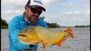 Baicasteros, Pesca de Dorados y variada cazadora en Sana Elena E.R.