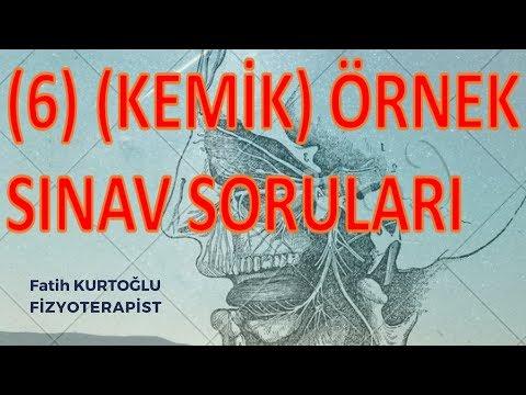 Konu Özetli-Kemik | Anatomi Öğreten Örnek Sınav Soruları 6