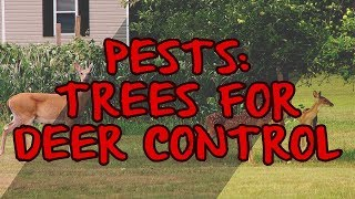 Pests: Trees for Deer Control
