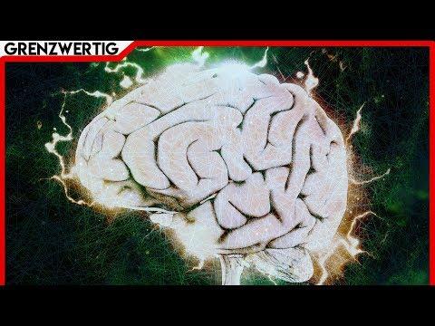 😱Wissenschaftler macht Sensationelle Entdeckung! Der unglaubliche Beweis für die Kraft der Gedanken
