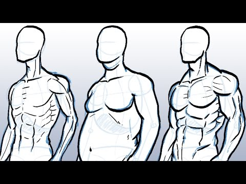 how-to-draw-different-body-types