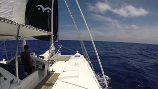 Wharram Catamaran Tiki38, 'Jumpa Lagi',  sailing fast to windward 7 8knots and reaching 7 9knots on
