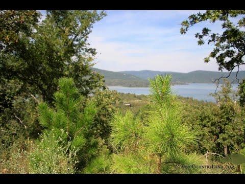 Sardis Lake Property