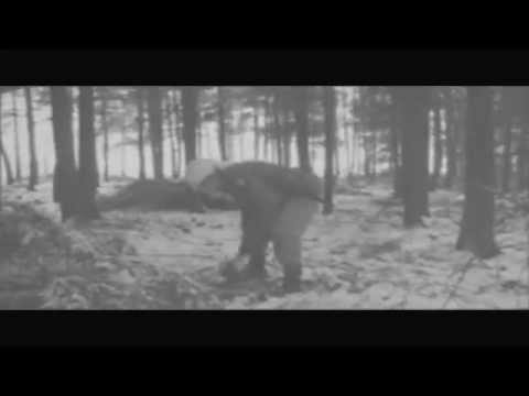 2nd Infantry Division, 23rd IR, US Army - Monschau Forest, February 1945 (Reenacting)