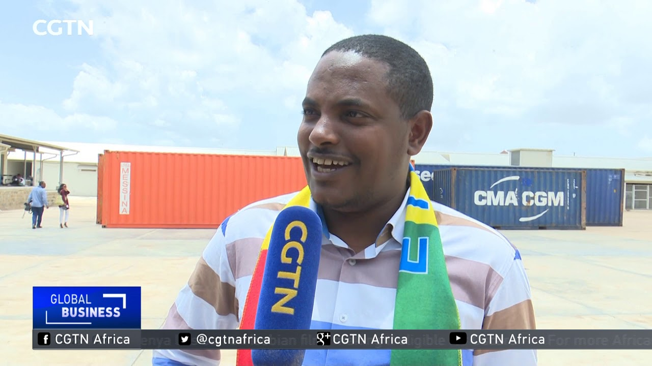 CGTN: Ethiopia-Eritrea Ties; Flights, Port Services and Road Transportation Resume Between Countries
