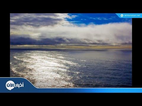 أمل جديد لمرضى السرطان.. -السر- في أعماق البحار  - 23:54-2018 / 9 / 19