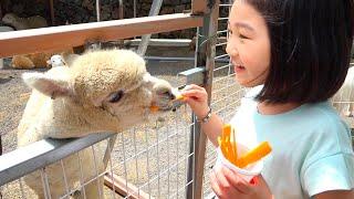 Boram naik dan bermain di video taman dinosaurus untuk anak-anak