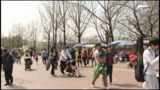 서울어린이대공원 봄꽃축제 현장스케치썸네일