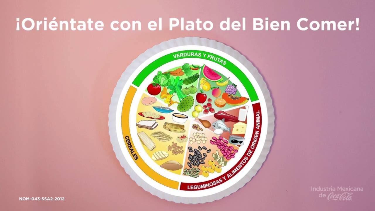 informacion sobre el plato del buen comer