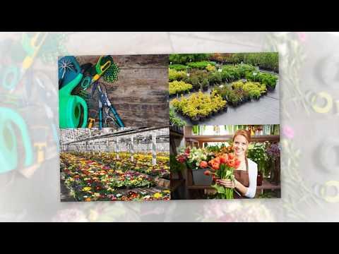 Votre fleuriste, pépiniériste, jardinerie en première page ?