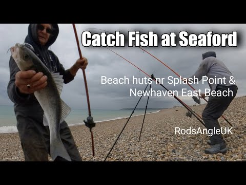 Catch Fish At Seaford: SEAFORD BAY ENDS COMPARED