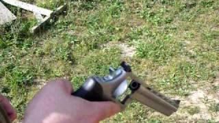 The Taurus .357 Magnum 8-Shot Revolver