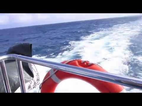 BARCELONA SEA CRUISE LASGOLONDRINAS