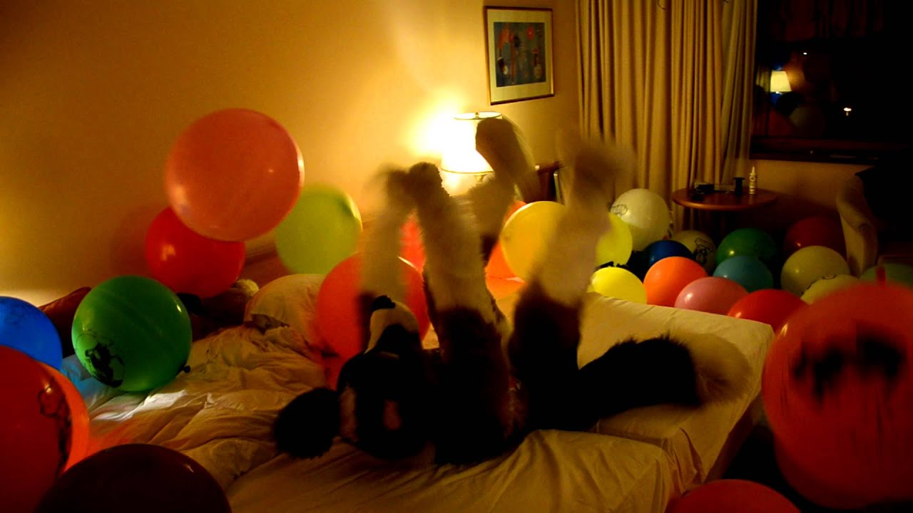 Join. happens. balloon fetish free apologise