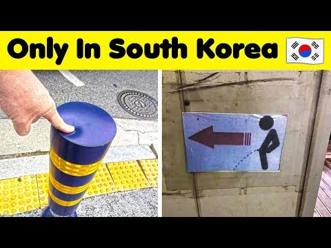 The Weirdest Things Seen In SOUTH KOREA 🇰🇷💕