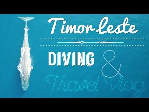 TIMOR LESTE Travel Vlog | Dili Dive Trip!