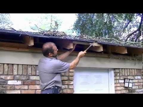 How to fix roof damage from a fallen limb/avoid insurance claim.