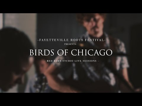Super Lover by Birds of Chicago