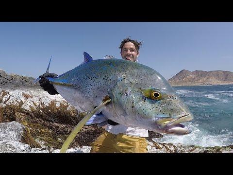 No Boundaries Oman - Bluefin Trevally Off The Rocks