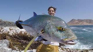 No Boundaries Oman - Bluefin Trevally off the Rocks