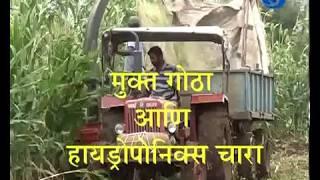 Amchi Mati Amchi Manse - 21 February 2018 - मुक्त गोठा आणि हायड्रोपेंनिक्स चारा
