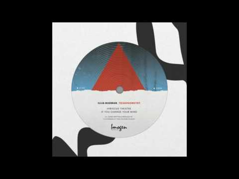 Ilija Rudman - If You Change Your Mind (Trigonometry EP)