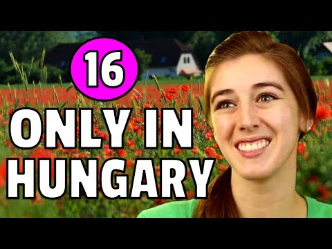 16 CRAZIEST Things You Only See In Hungary