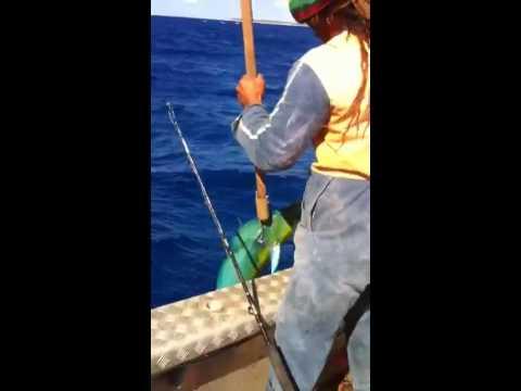Deep Sea Fishing in the Cook Islands: 101 Amazing Adventures