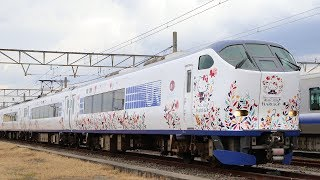 JR西日本がサンリオの人気キャラクター「ハローキティ」とコラボレーションした関空特急「はるか」のオリジナルラッピング電車「ハローキティ...
