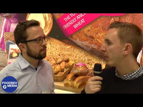 Goodmills Innovation unveils 2ab Wheat