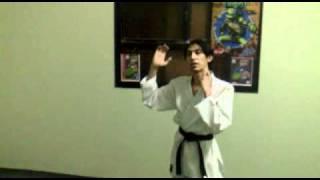 الدرس الرابع: تعلم الكاراتيه هجمات اليد.