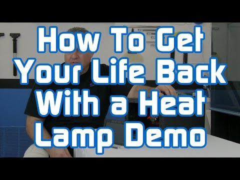 How To Get Your Life Back With A Heat Lamp Demo