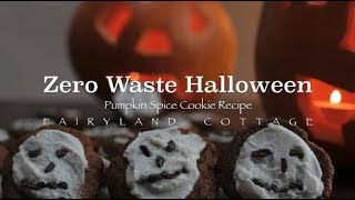 Zero Waste Halloween - Pumpkin Spice Cookie Recipe - vegan/no refined sugar