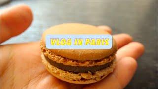[vlog] 송편대신 마카롱 먹는 파리에서 보낸 추석(…