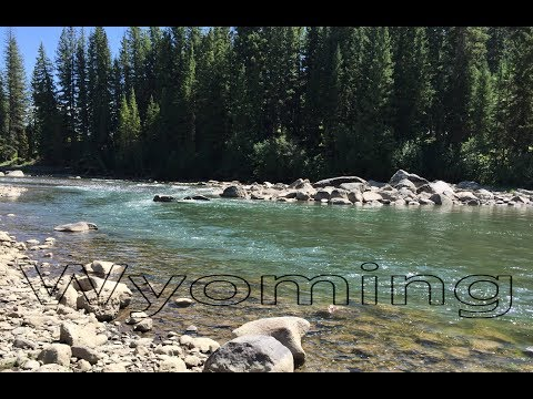 Fly Fishing Rivers of Yellowstone National Park Ep. 63