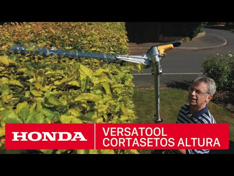 Honda Versatool - Accesorio Cortasetos de Altura