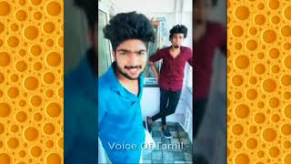 Best Comedy Dubsmash Musically Mass Collection Of Mc Praveen - Voice Of Tamil