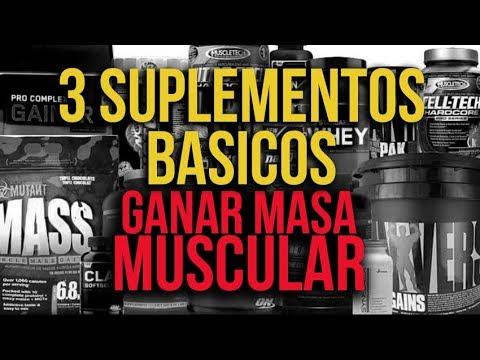 Suplementos nutricionales para ganar masa muscular