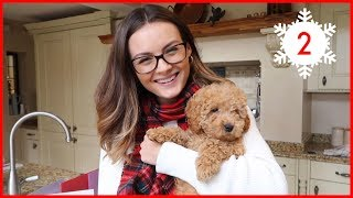 MEET OUR PUPPY! | Vlogmas #2