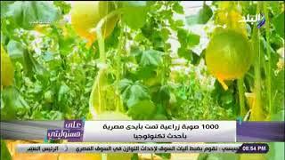 أحمد موسى : «1000 صوبة زراعية تمت بأيدى مصرية .. والدولة أصبحت مصنعة ومنتجة»