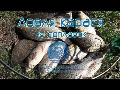 Видео ловля карася на поплавочную удочку - секреты : Рыболовный дневник