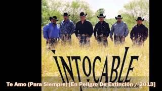 Intocable - Te Amo (Para Siempre) [En Peligro De Extinción / 2013]
