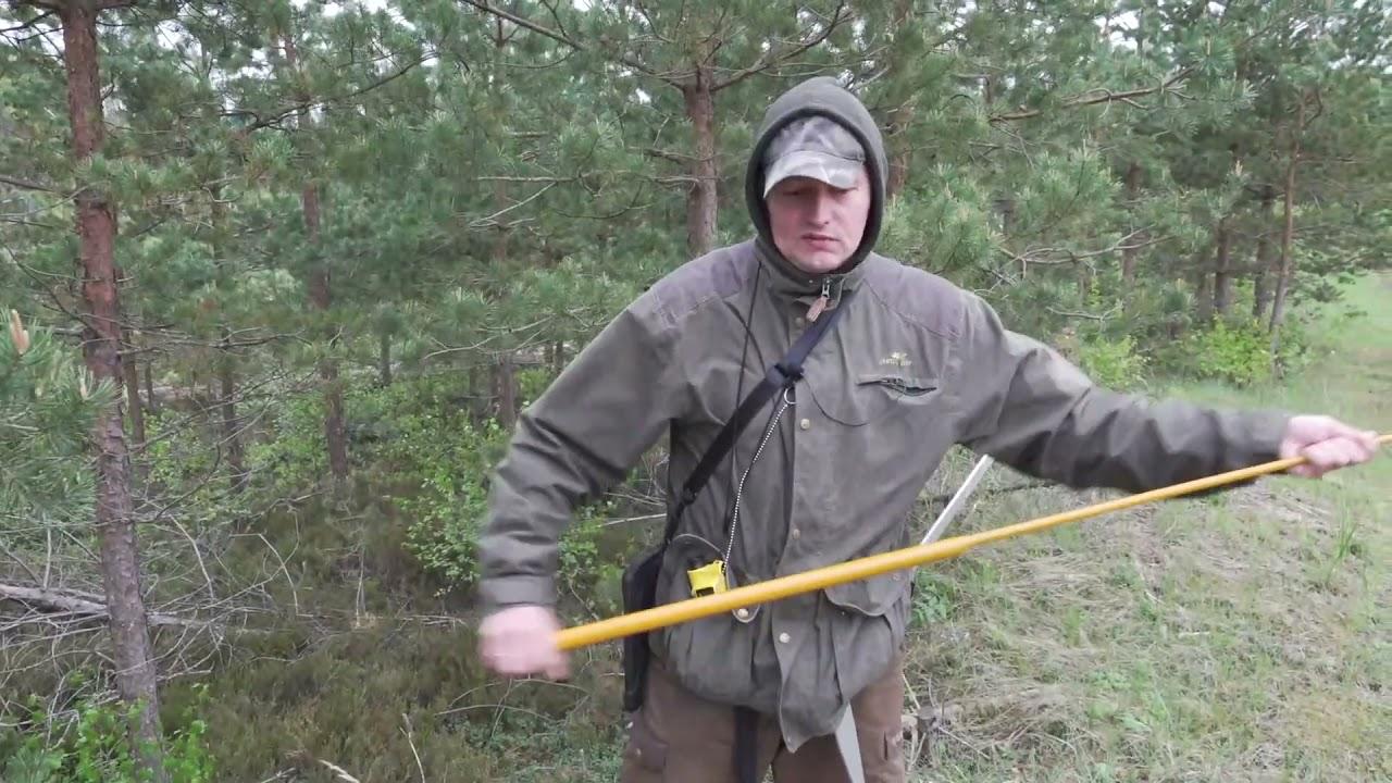 #016 Üllart Länik   Mida teeb metsakorraldaja osa2