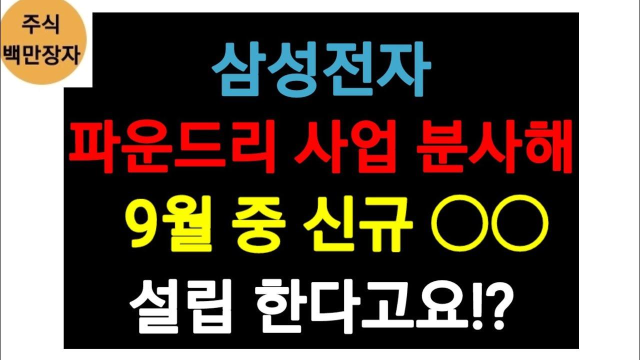 삼성전자, 파운드리 사업 분사해 9월중 신규 ○○ 설립 한다고요?
