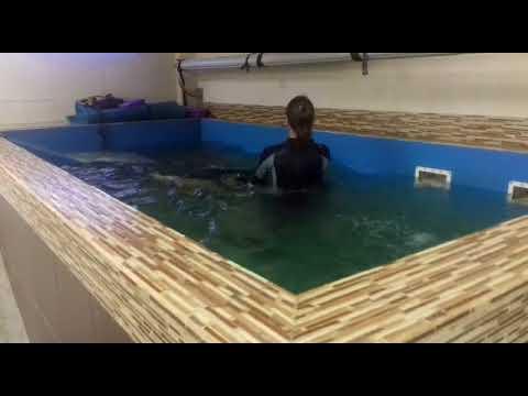 Видео Дар даром москва