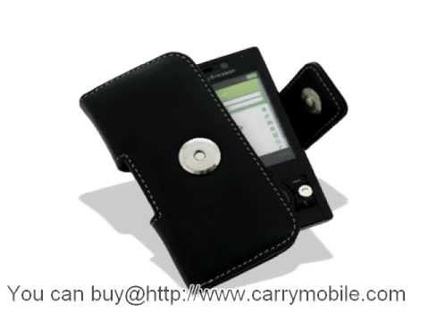 Carrymobile Leather Case for Sony Ericsson G705 - Pouch Type (Black)