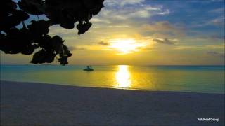 Download 【Relax & Healing BGM】Sea wave and Birdsong/波の音と小鳥3時間 Mp3 and Videos